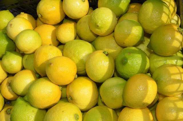 Limon dilimleriyle uyumanın faydaları nelerdir? - Sağlık Fotoları23 - |  AKŞAM