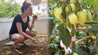 Oyuncu Özge Borak organik tarıma merak saldı