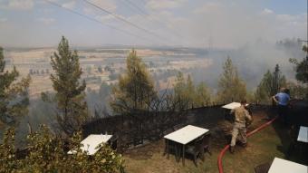 Gaziantep'teki orman yangınında 5 hektar alan zarar gördü