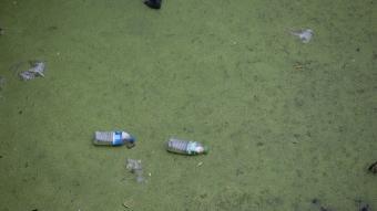 Atılan çöpler nehir debisi düşünce ortaya çıktı