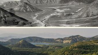 Tarım ve Orman Bakanlığı Türkiye'yi yeşillendiriyor! İşte ormanlarımızın eski ve yeni halleri