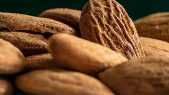 Dünyanın en besleyici ve yararlı besini badem seçildi