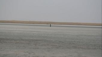 Seyfe Gölü, yağış olmaması nedeniyle kurudu