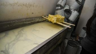Kayseri'de tüketime uygun olmayan 3 ton süt ürünü imha edildi