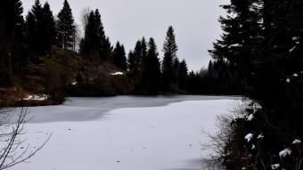 Buz tutan Balıklıgöl'de kartpostallık manzaralar