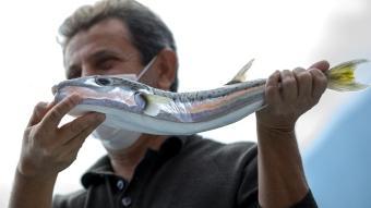 Balon balığının kuyruğuna 5 lira destek ödemesi balıkçıları mutlu etti