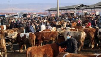 Türkiye'nin ''en büyük'' canlı hayvan pazarı perşembe günleri kurulacak
