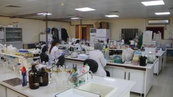 Amasya Üniversitesinde görevli öğretim üyesi, yeni bir toprak bakterisi keşfetti