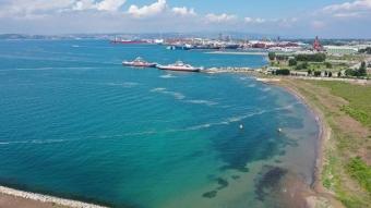 Yalova kıyılarından 9 günde 1478 metreküp müsilaj toplandı