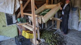 Kütahyalı marangoz ahşaptan susuz ceviz soyma makinesi icat etti