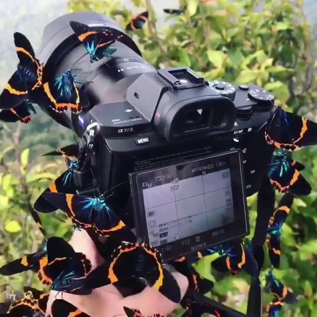 Fotoğraf çekerken asıl güzelliğin makinenin üzerinde kalması