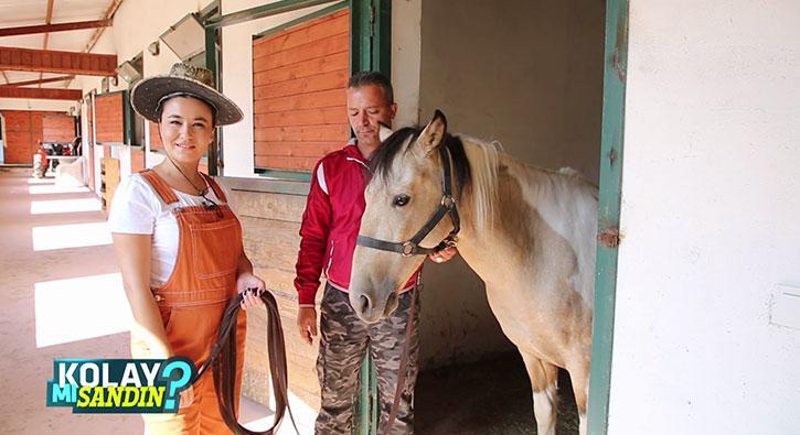 At bakıcısı olmak kolay mı?