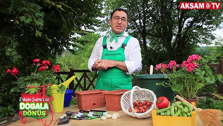 Evdeki Saksınızda Hangi Sebzeleri Yetiştirebilirsiniz?