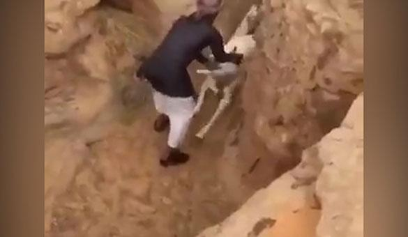 Çukura düşen deve yavrusunu annesine kavuşturdu