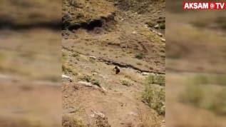 1 PKK'lı terörist daha teslim oldu! İşte o görüntüler...