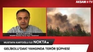 Terör örgütü PKK'nın yaktığı ormanlar...