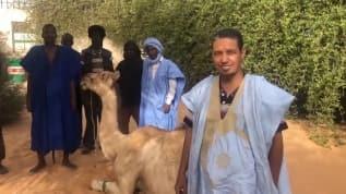 Ayasofya'nın ibadete açılması Moritanya'da kurban kesilerek kutlandı
