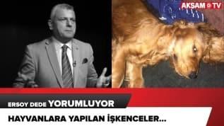 Köpeğe tecavüz iddiası... Ersoy Dede yorumluyor...