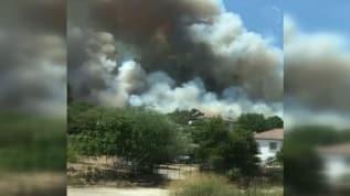 İzmir'de orman yangınlarının sonu gelmiyor, Menderes'te ormanlık alanda yangın çıktı