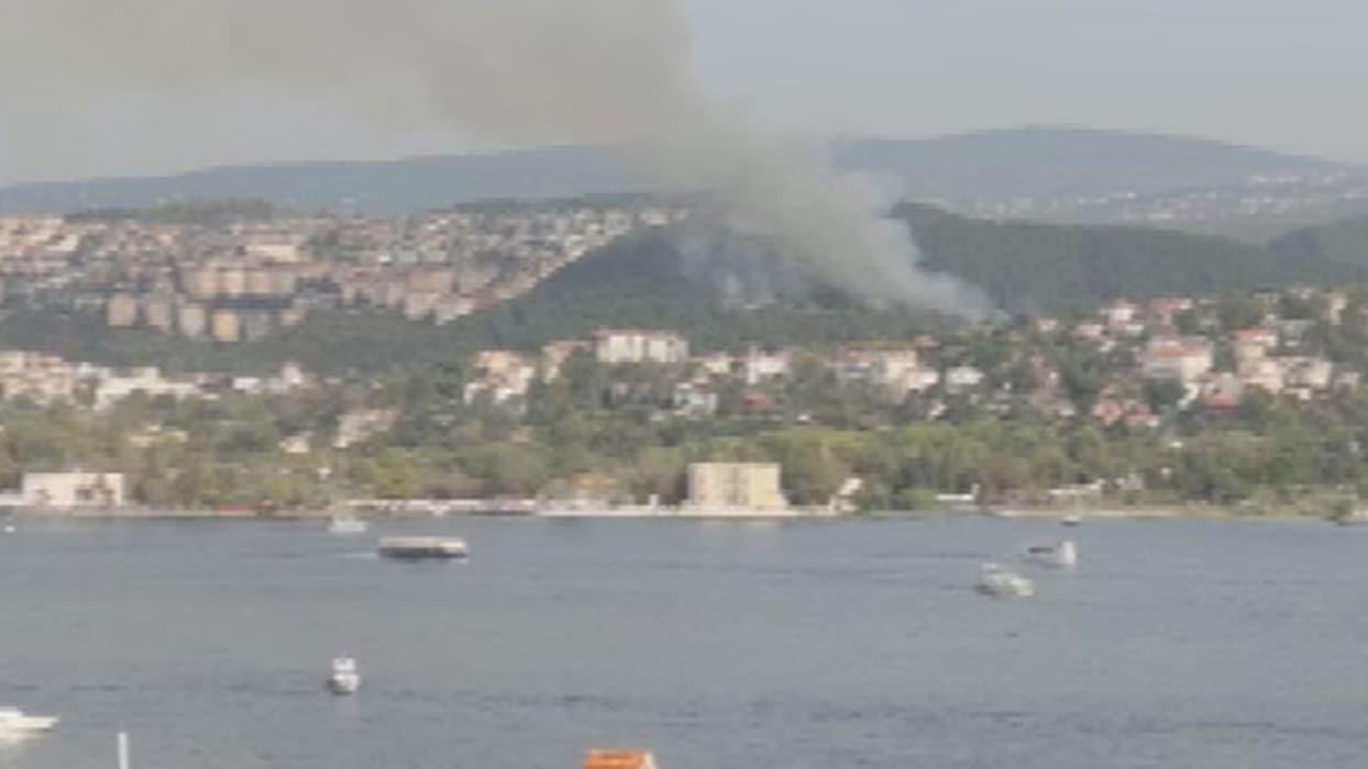 Beykoz'daki ormanlık alanda yangın çıktı. Alınan bilgiye göre, Yenimahalle Bent Yolu Caddesi'ndeki o