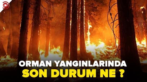 Orman yangınlarında son durum ne?