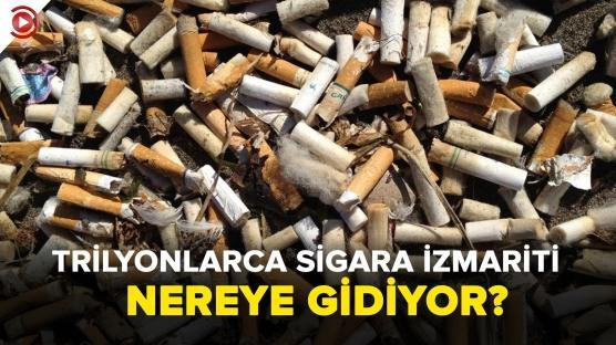 Trilyonlarca sigara izmariti nereye gidiyor?