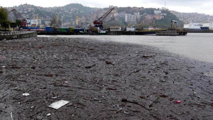Bataklık değil Zonguldak'ın denizi!