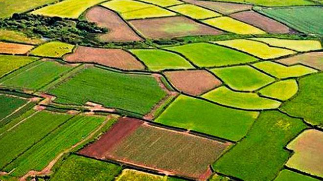 VakıfBank'tan organik tarıma özel kredi