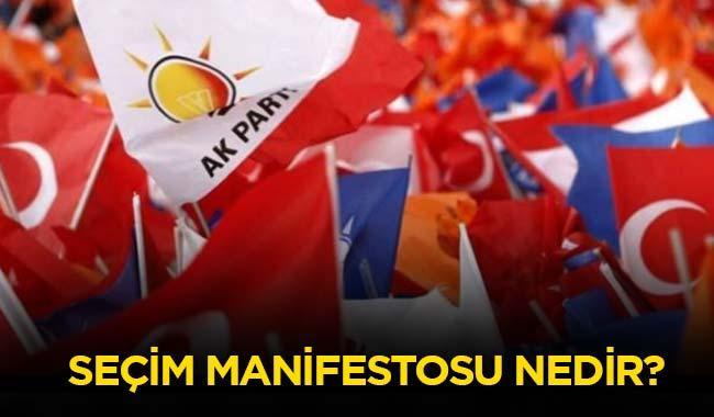 "Manifesto ne demek"""
