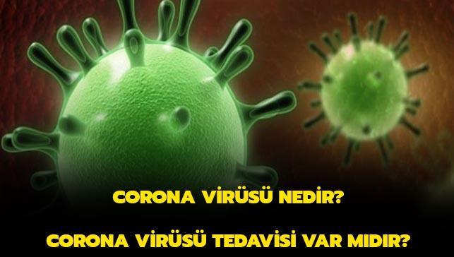 """Corona virüsü nedir"""" Nasıl geçer"""" Tedavisi var mıdır"""""""