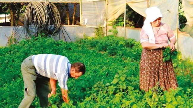 'Köyleri terk etmeyin çiftçilikte kar artıyor'