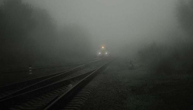 Şiddetli hava kirliliği doğum kusurlarına, ölümlere neden olabilir