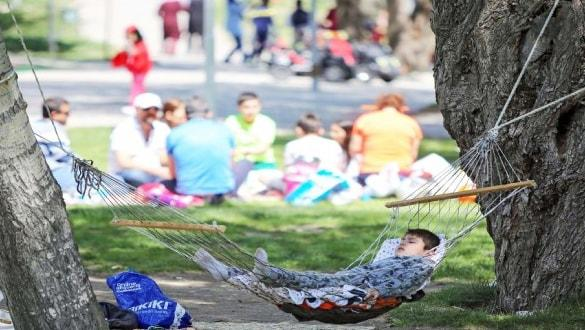 Uzmanlardan piknik yapanlara önemli uyarı
