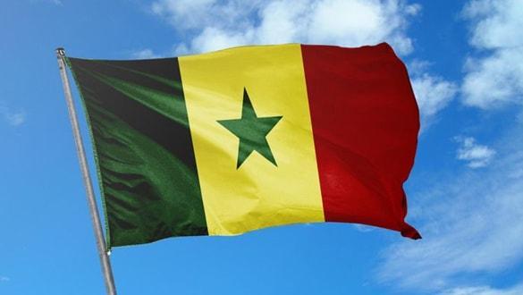 """Senegal'de neler oluyor"""" 10 günde 61 çocuk kayboldu"""
