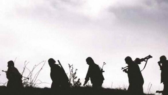 Mersin'de terör örgütü PKK'nın dağ kadrosundaki terörist yakalandı