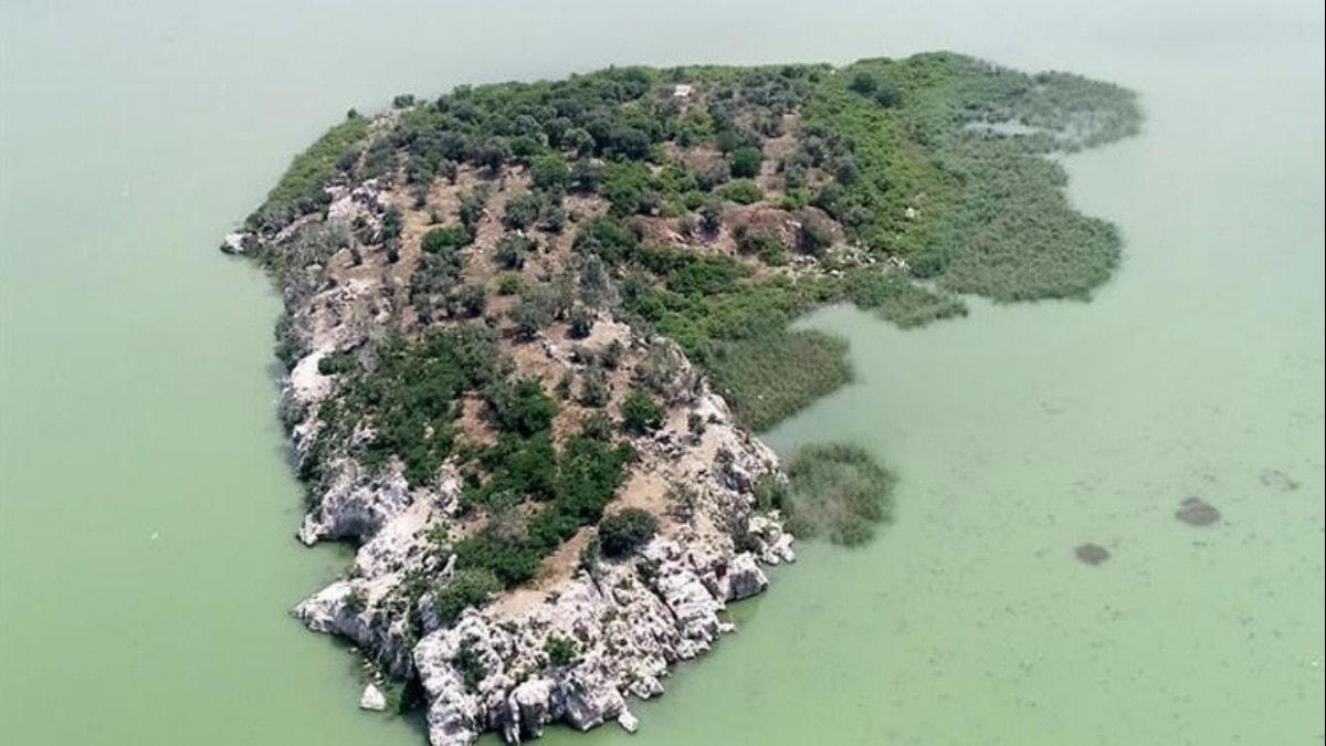 Bursa'da sahibinden satılık ada! Ramsar sözleşmesi kapsamında