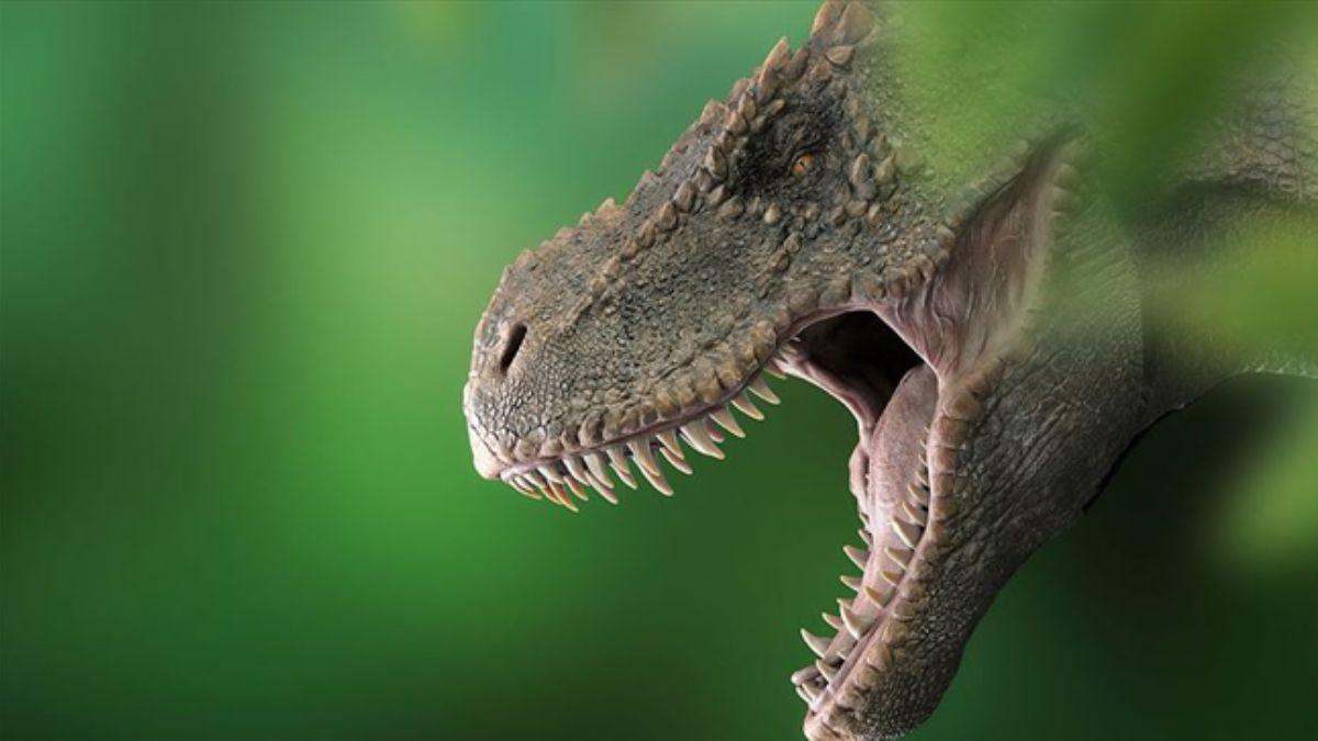 Dinazor fosilleri ve T-Rex'lerle ilgili yeni keşif! Klima işlevi gördükleri ortaya çıktı