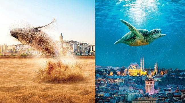 Fantastik İstanbul