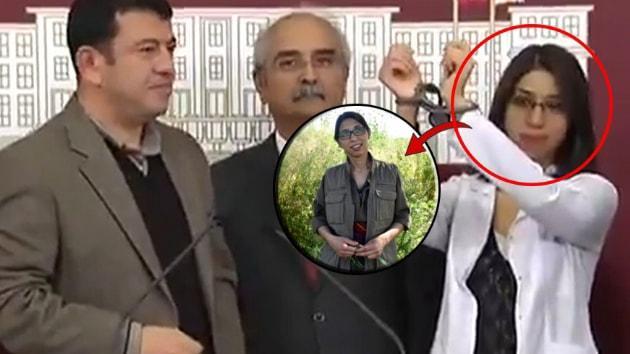 CHP'li Ağbaba Mehmetçik'e pusu kuran teröristi TBMM'de ağırlamış