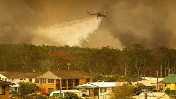 Avustralya'da orman felaketi! En az 100 ev yok oldu
