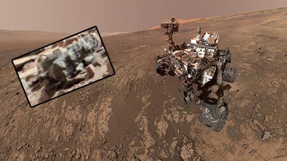 Mars'ta böcek izleri