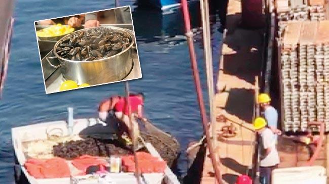 Zehirli midye çıkarıp halka yediriyorlar