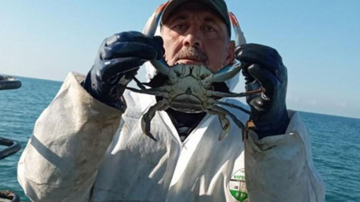 Karadeniz'de ağlara takıldı! Nadir görülüyor