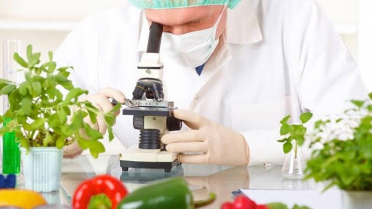 Hileli gıdaya karşı ilginç çağrı: Maaşımızı devletten alalım