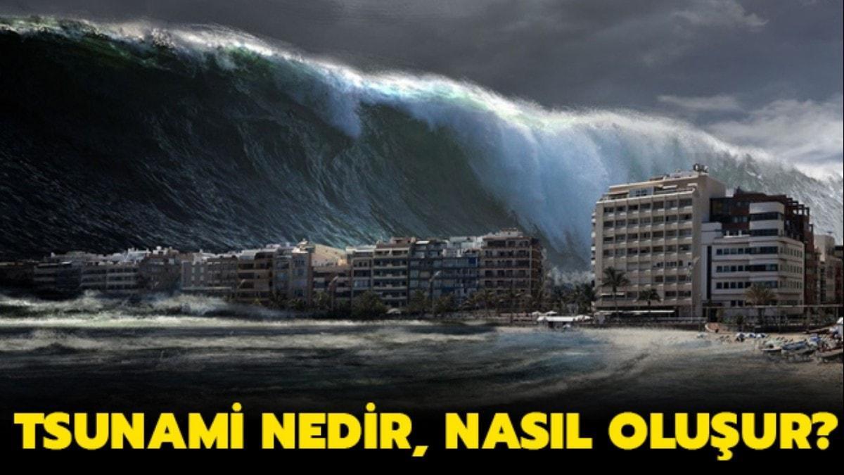 """Tsunami nasıl olur, nerelerde görülür"""" Tsunami nedir"""""""