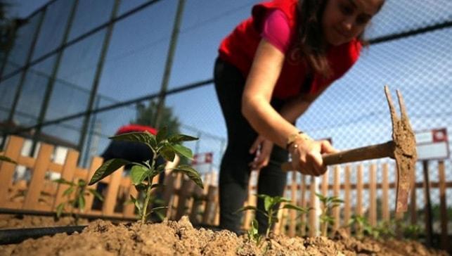 Bakan Pakdemirli: Yerli tohum üretiminde 2019 itibarıyla 1 milyon 130 bin tona geldik