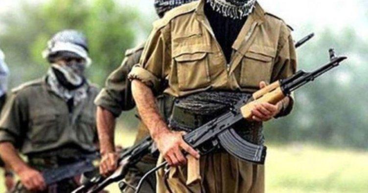 Teröristler dağa kaçıracaktı! Vali Memiş kurtardı
