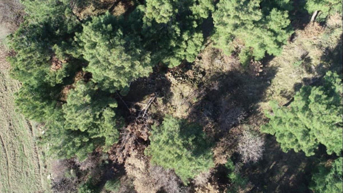 Arkeoloji öğrencisinin ormanda bulduğu lahit, koruma altına alındı