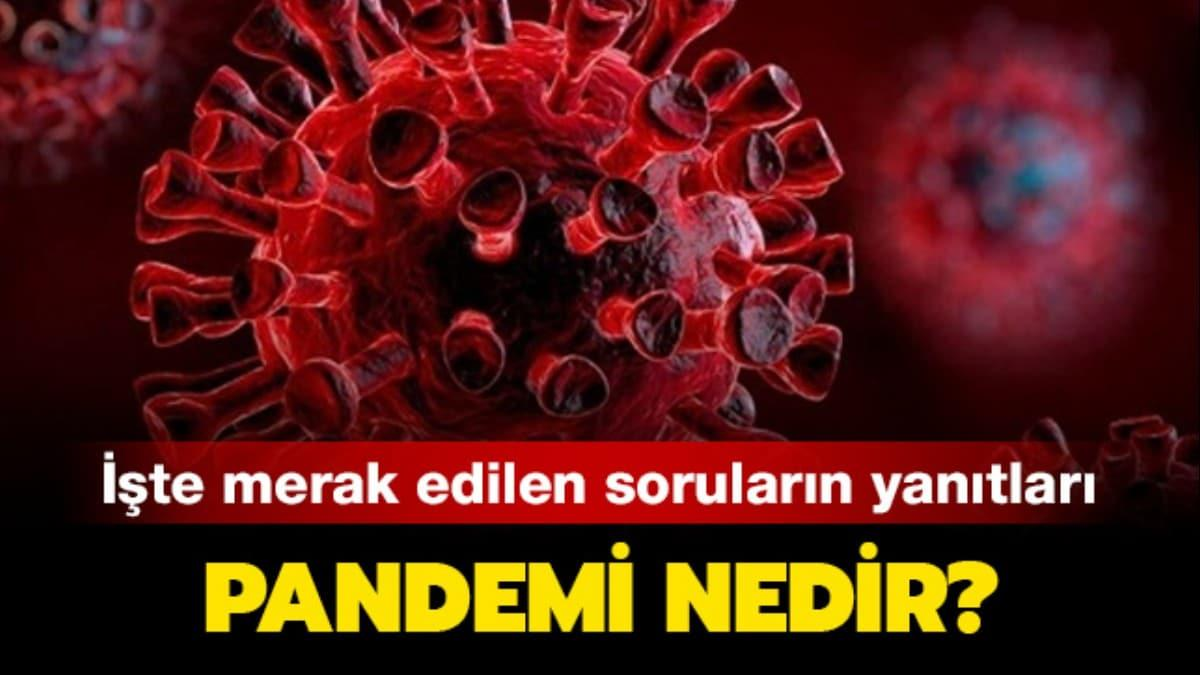 """Pandemik hastalıklar nedir"""" Pandemi nedir, ne demek"""""""