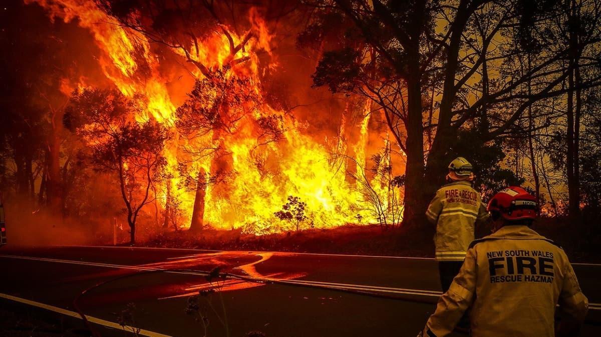 Avustralya'da 6 ay süren yangınların oluşturduğu hasar raporu yayımlandı